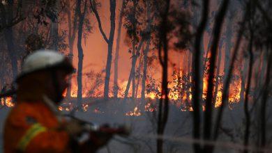 Photo of بسبب موجة من الحر الشديد..أكثر من 100 حريق يلتهم مئات آلاف الهكتارات في أستراليا