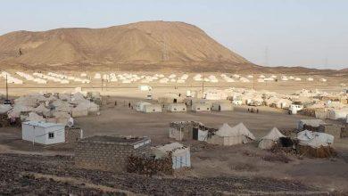 Photo of منظمة الهجرة: أكثر من 71 ألف نازح استقبلتهم مأرب منذ مطلع العام الجاري
