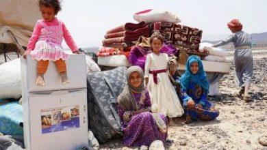 Photo of الأمم المتحدة: نصف سكان اليمن يعانون من الجوع
