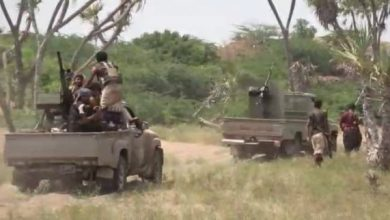 Photo of ضربات محكمة تخمد مصادر نيران حوثية جنوب الحديدة