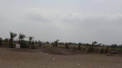 Photo of قصف مدفعي لمليشيات الحوثي على منازل المواطنين في الجبلية