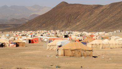 Photo of الأمم المتحدة: 79 % من نازحي مأرب نساء وأطفال ويعيشون على أقل من دولار في اليوم