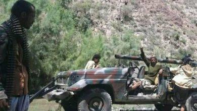 Photo of القوات الجنوبية تُخمد تحركات حوثية بجبهة حيفان