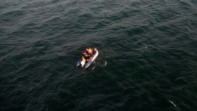 Photo of إنقاذ 80 مهاجرا قبالة سواحل شمال فرنسا