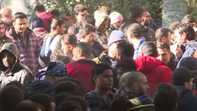Photo of ألمانيا وهولندا تعلقان ترحيل طالبي اللجوء الأفغان إلى وطنهم